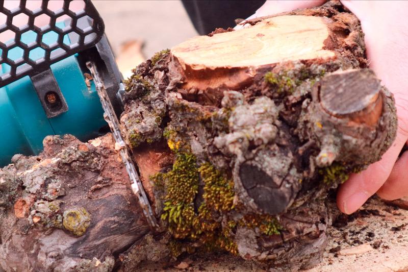 Irány a kerti munka - mini láncfűrész teszt 8